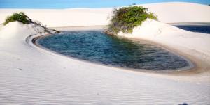Parque Nacional dos Lençóis Maranhenses, Barreirinhas, Maranhão 008 - Mundo Gekos Receptivo