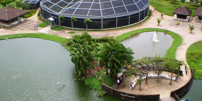 Vista Aérea do Mangal das Garças, Belém, Pará 001 - Mundo Gekos Receptivo