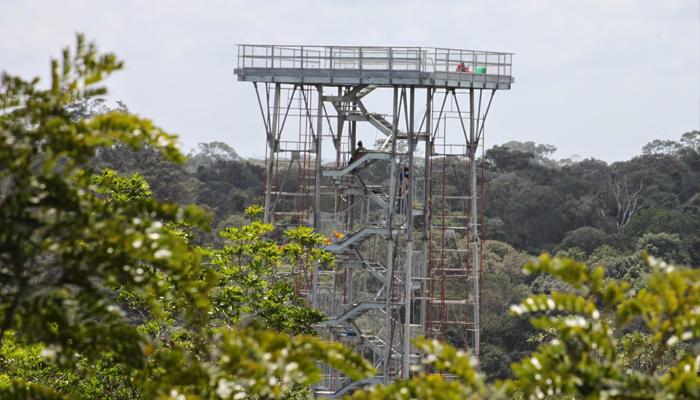 Torre de observação do Museu da Amazônia, Manaus, Amazonas 001 - Mundo Gekos Receptivo