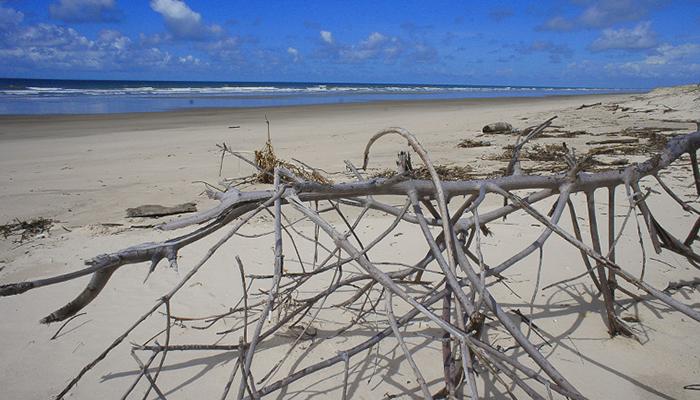 Praia de Caburé, Barreirinhas, Maranhão 001 - Mundo Gekos Receptivo