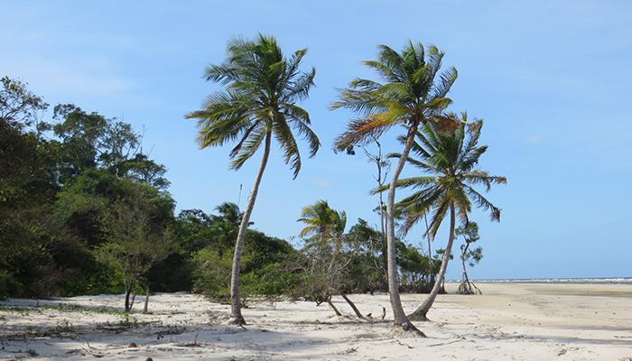 Praia do Pesqueiro, Soure, Ilha de Marajó, Pará 005 - Mundo Gekos Receptivo